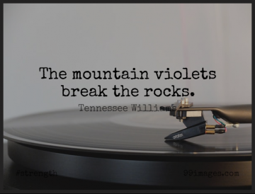 Short Strength Quote by Tennessee Williams about Rocks,Mountain,Violet for WhatsApp DP / Status, Instagram Story, Facebook Post.