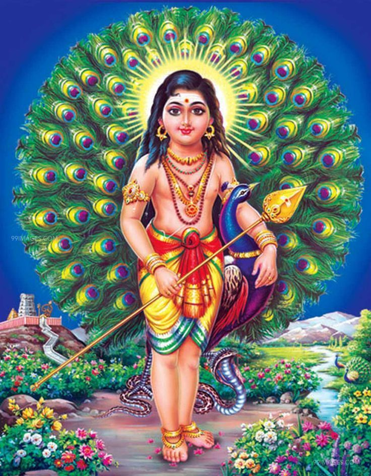 God Murugan Latest HD Photos & Wallpapers, WhatsApp DP (1080p) (475) - God Murugan