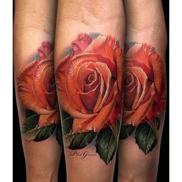 Red Rose Forearm Tattoo Design