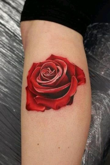 Red Rose Leg Tattoo Design