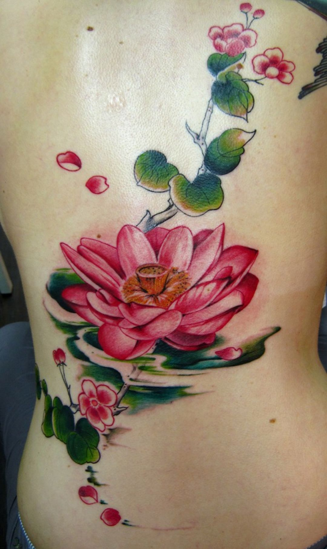 Red Lotus Ribs Tattoo Design (286306) - Best  Tattoos