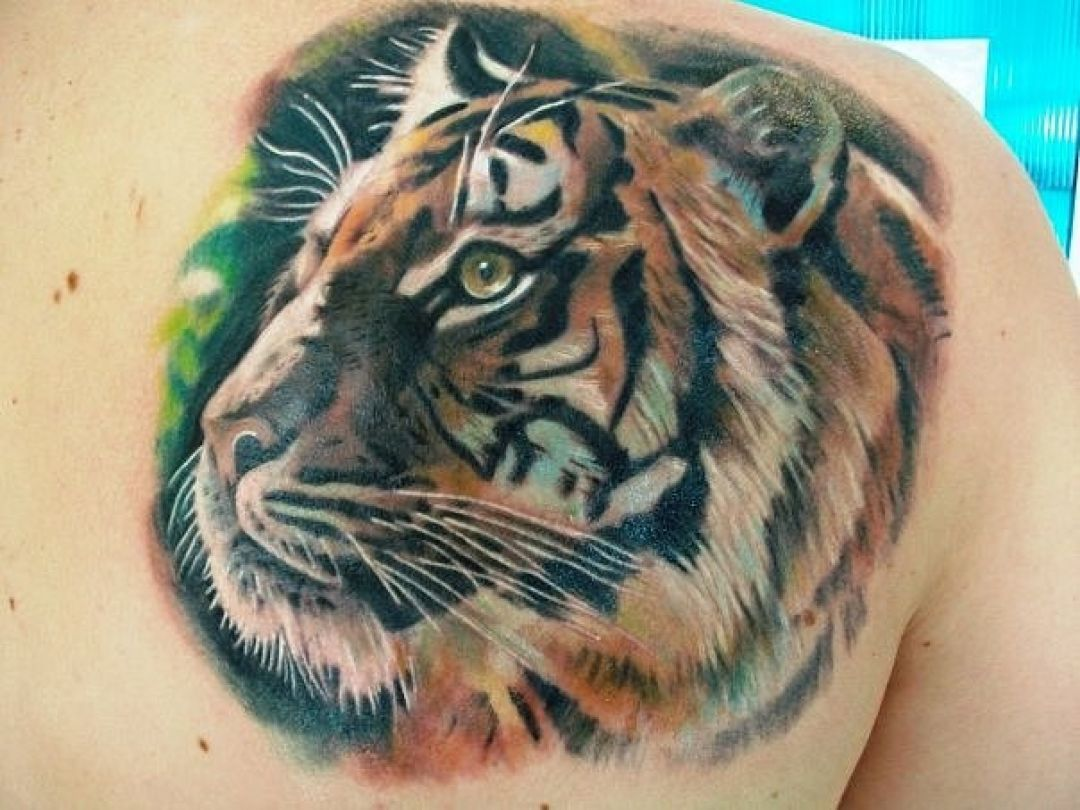 100 Tiger Head Shoulder Tattoo Design 1080x810 2020
