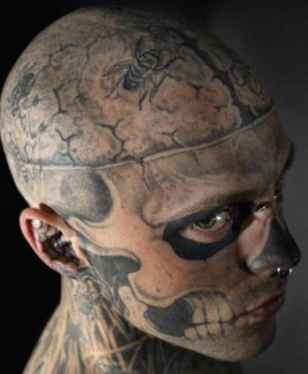 Zombie Head, Face Tattoo Design For Men (male) (299195) - Best  Tattoos