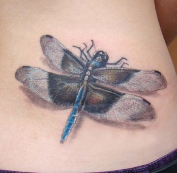 Realistic Dragonfly Ribs Tattoo Design