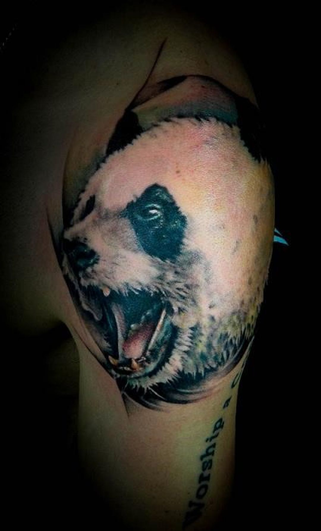 Realistic Panda Head Tattoo Design (284146) - Realistic Tattoos