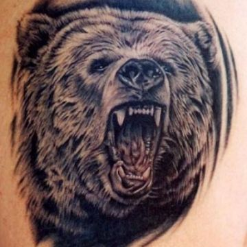Realistic Black Bear Tattoo Design