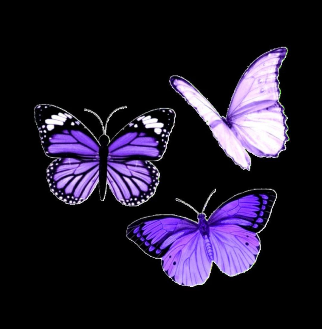 Iphone Aesthetic Iphone Purple Butterfly Wallpaper
