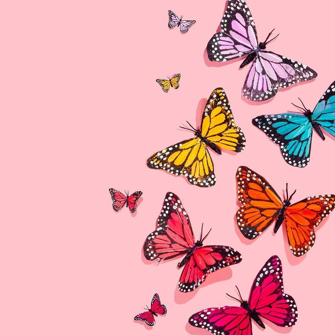 40 Aesthetic Butterfly Android Iphone Desktop Hd Backgrounds Wallpapers 1080p 4k 1080x1080 2020