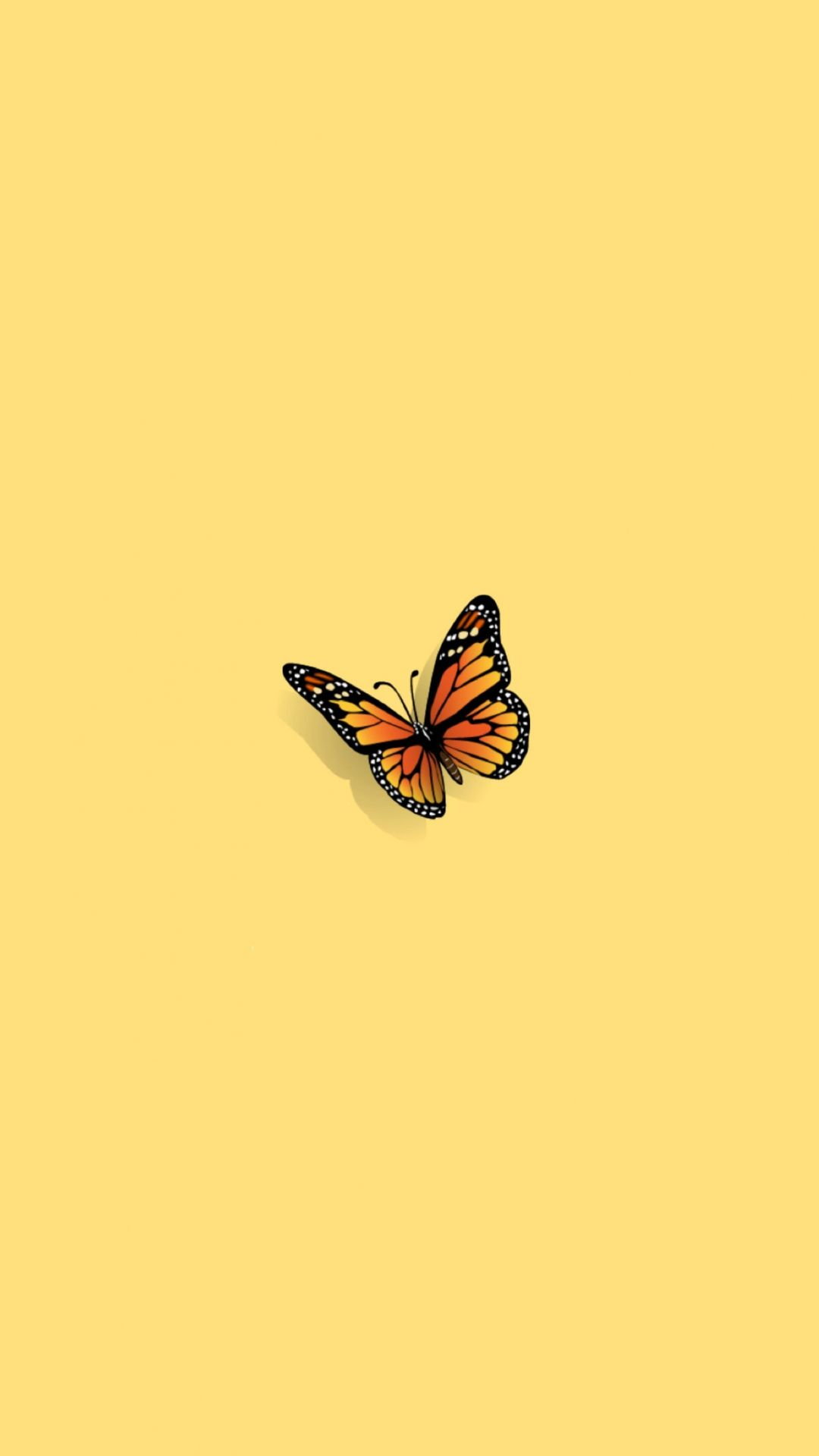 40 Aesthetic Butterfly Android Iphone Desktop Hd Backgrounds Wallpapers 1080p 4k 1591x2829 2020