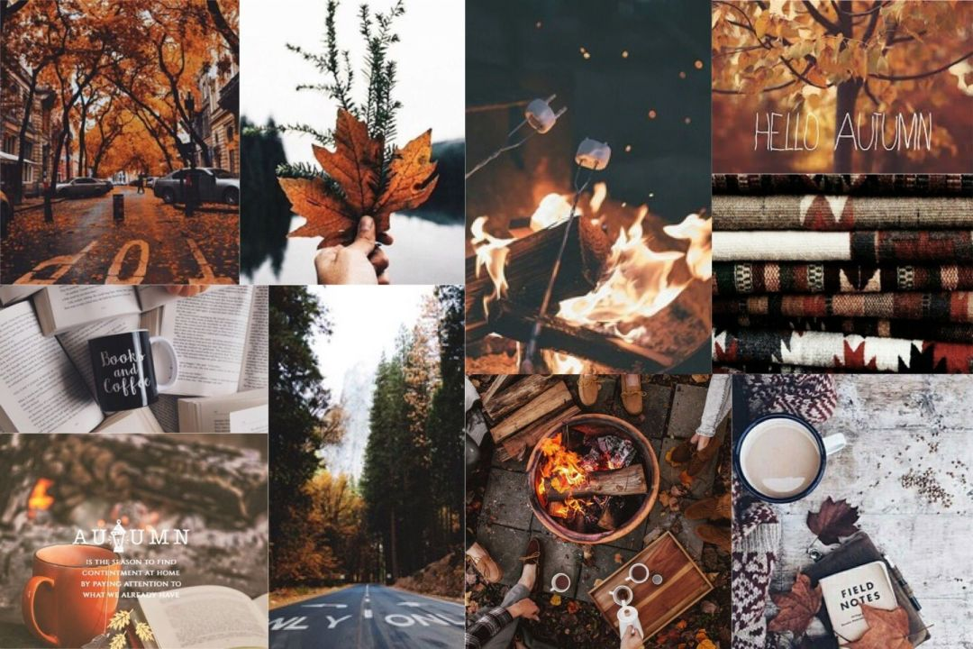 55 Autumn Aesthetic Laptop Android Iphone Desktop Hd
