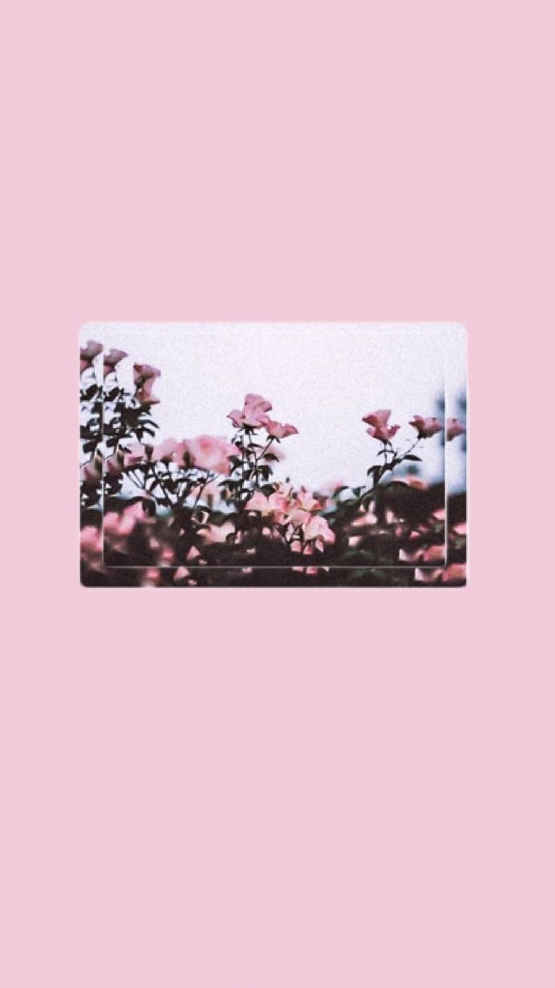 140+ Pink Aesthetic Tumblr Laptop - Android, iPhone ...