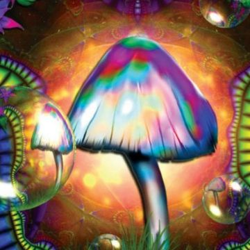 50 Trippy Hd 1920x1080 Android Iphone Desktop Hd