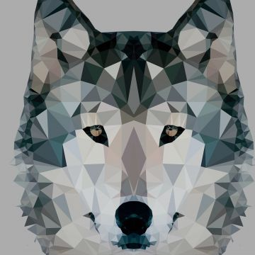 Wolf Geometric - Android, iPhone, Desktop HD Backgrounds / Wallpapers (1080p, 4k)