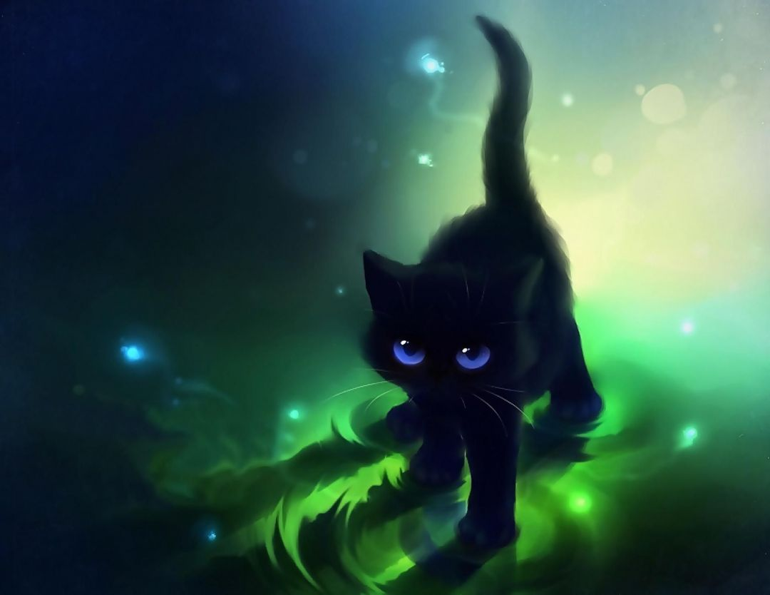 50 Black Cat Android Iphone Desktop Hd Backgrounds Wallpapers 1080p 4k 1920x1483 2020