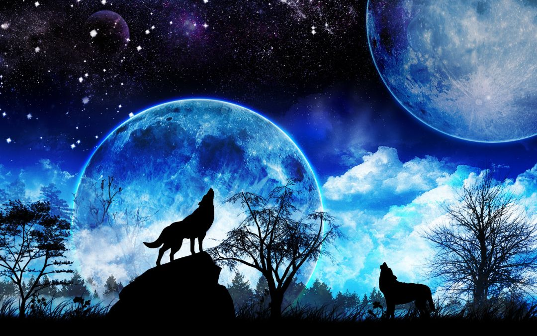 75 Galaxy Wolf Android Iphone Desktop Hd Backgrounds Wallpapers 1080p 4k 1920x1200 2020