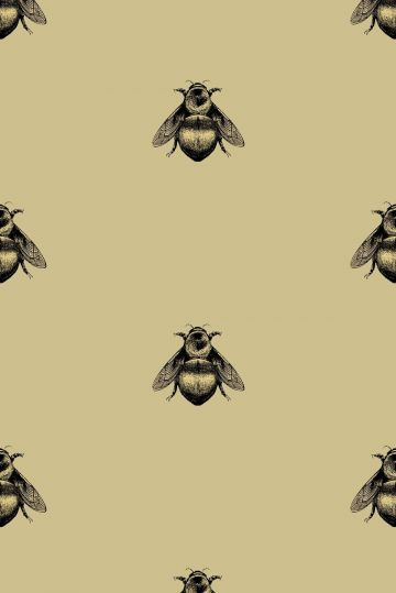 Bee - Android, iPhone, Desktop HD Backgrounds / Wallpapers (1080p, 4k)
