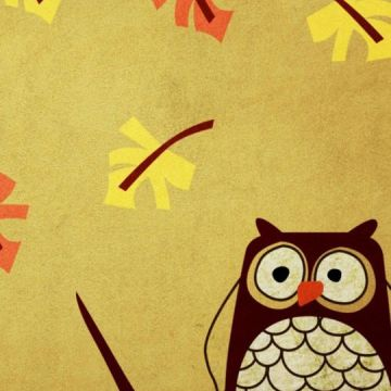 iphone wallpaper - owl - Android / iPhone HD Wallpaper Background Download