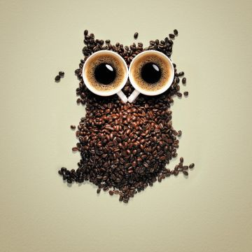 Download the Coffee Owl Wallpaper, Coffee Owl iPhone Wallpaper - Android / iPhone HD Wallpaper Background Download