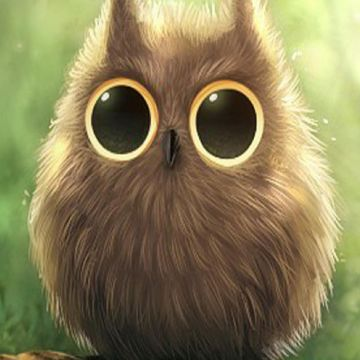 Cute Owl Big Eyes iPhone 6 Plus HD Wallpaper HD - Free Download - Android / iPhone HD Wallpaper Background Download