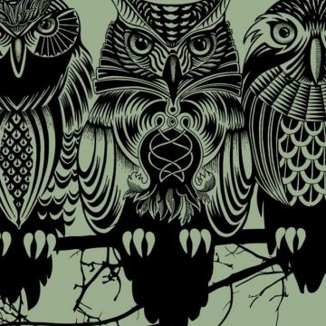 Owls artwork simple background wallpaper - Android / iPhone HD Wallpaper Background Download