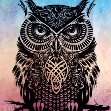 Owl iPhone - Android, iPhone, Desktop HD Backgrounds / Wallpapers (1080p, 4k)