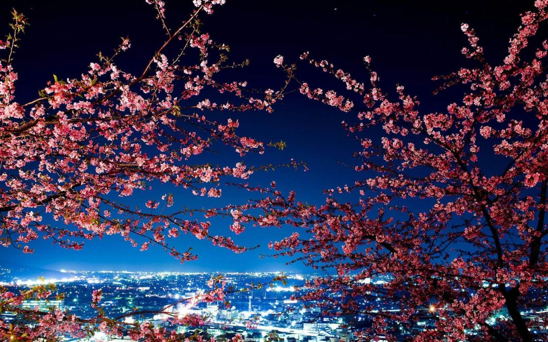 140+ Japanese Anime City - Android, iPhone, Desktop HD ...