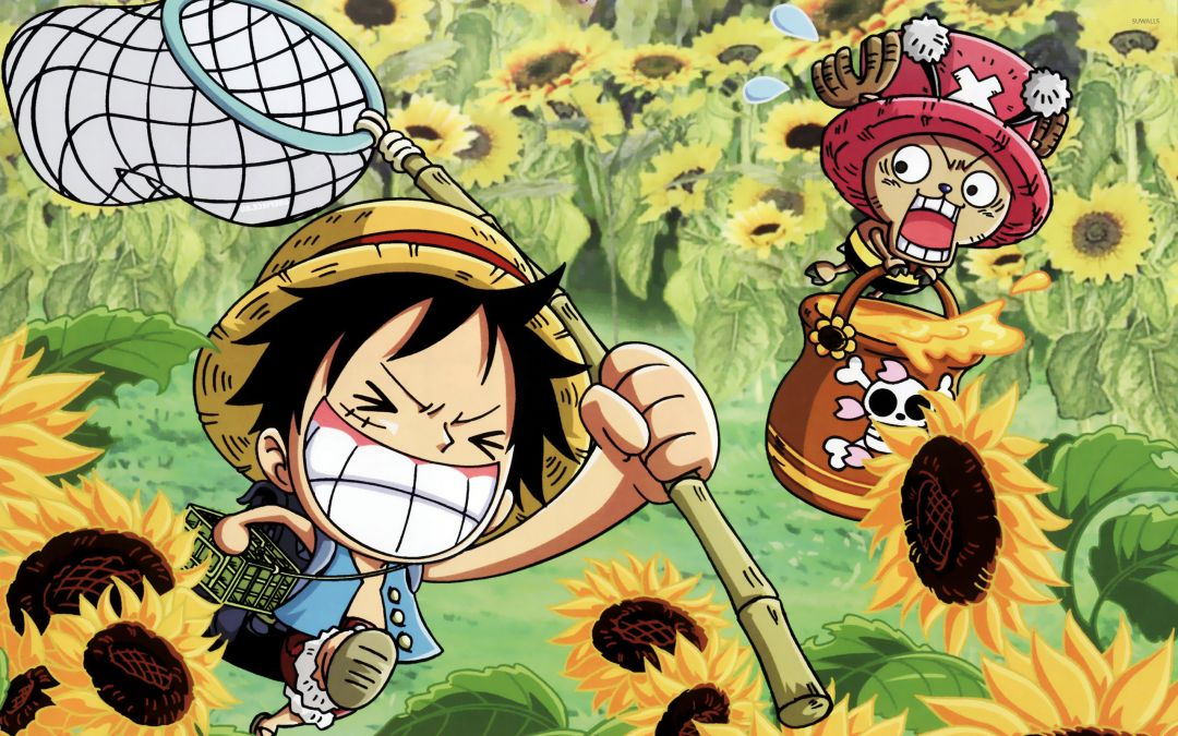 145 One Piece Chopper Android Iphone Desktop Hd Backgrounds Wallpapers 1080p 4k 2560x1600 2020
