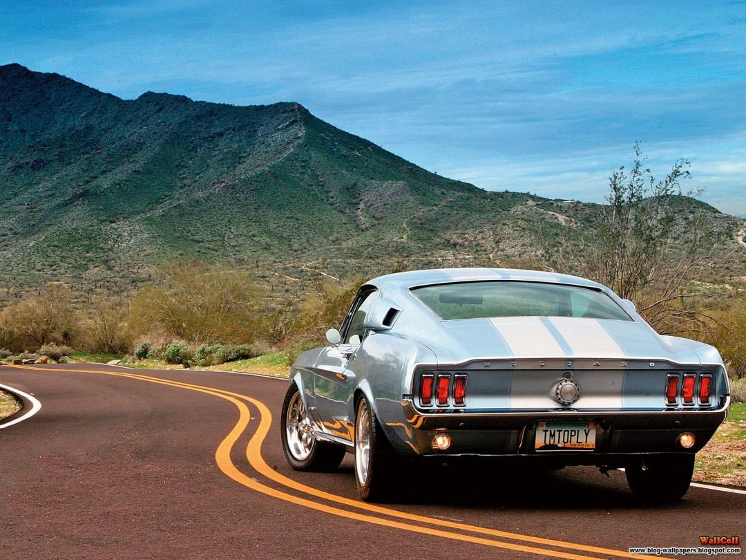 25 Mustang Android Iphone Desktop Hd Backgrounds