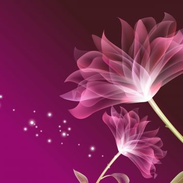 Pink flower - Android, iPhone, Desktop HD Backgrounds / Wallpapers (1080p, 4k)