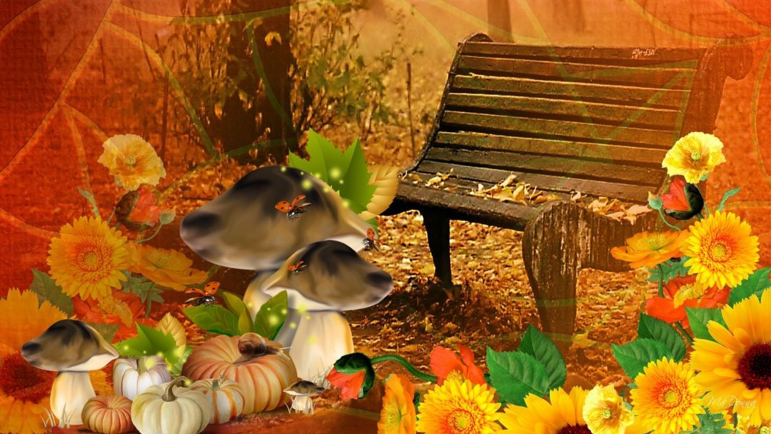 55+ Fall Pumpkin and Screensavers - Android, iPhone ...