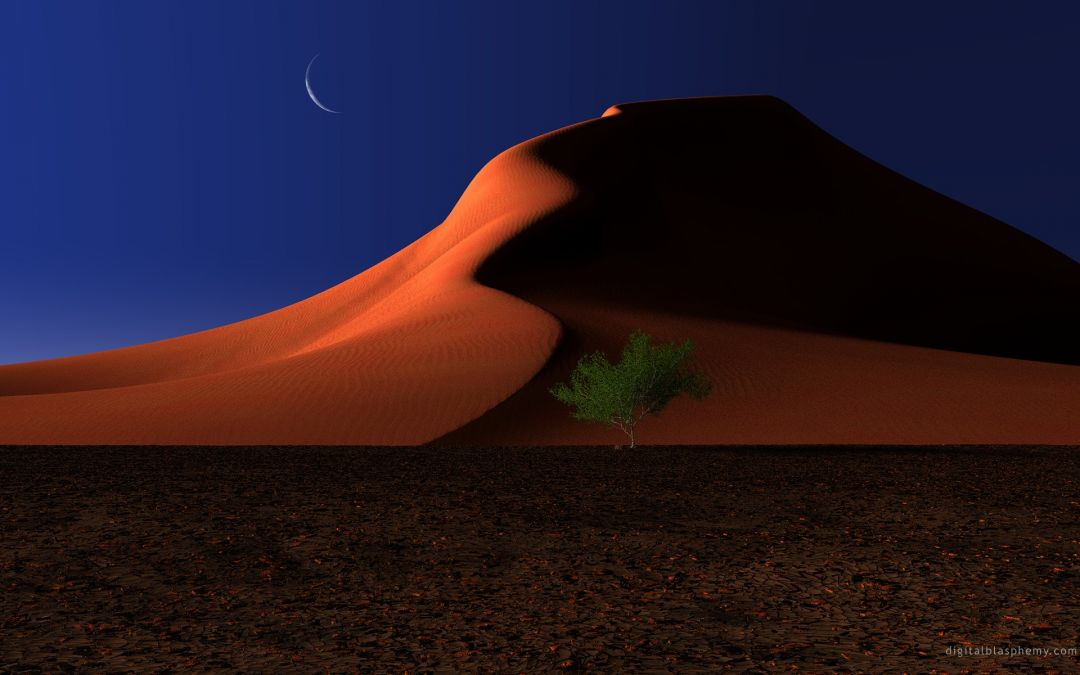 122195 Landscape Night Trees Dune Desert Nature Moon Android Iphone Hd Wallpaper Background Download 1920x1200 2021
