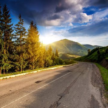 Nature Road Asphalt Sunlight Trees - Android / iPhone HD Wallpaper Background Download