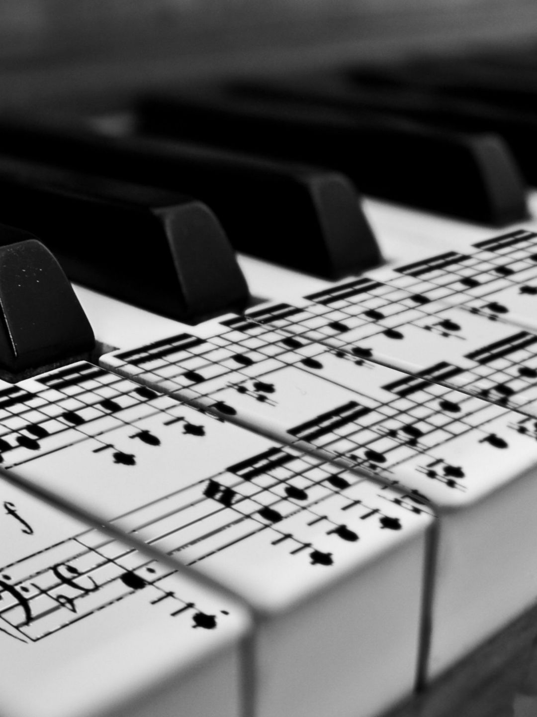 70 Hd Piano Android Iphone Desktop Hd Backgrounds Wallpapers 1080p 4k 1536x2048 2020