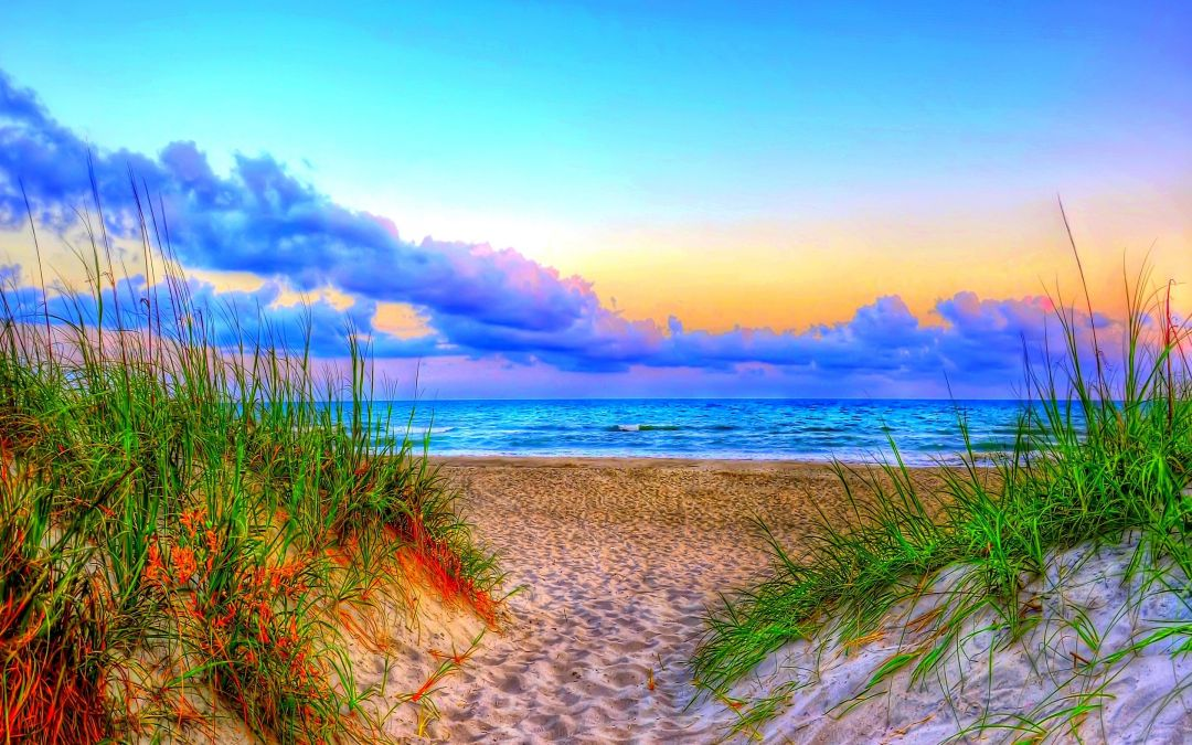60 Summer Nature Android Iphone Desktop Hd Backgrounds Wallpapers 1080p 4k 2880x1800 2020