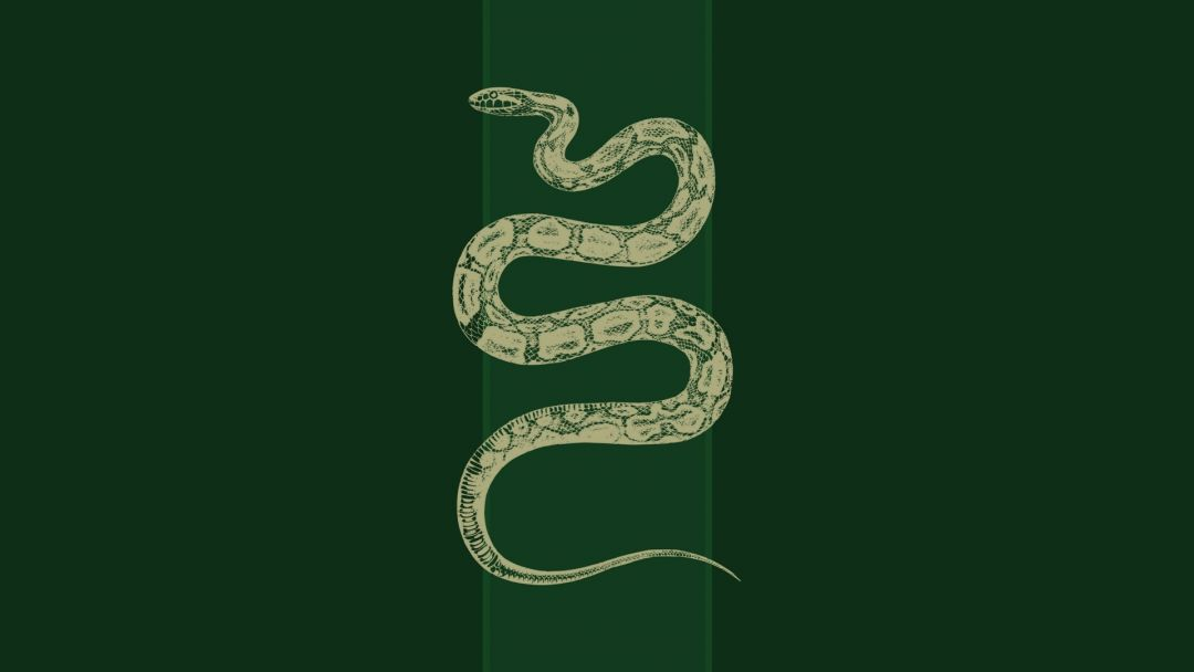 75 Hd Slytherin Android Iphone Desktop Hd Backgrounds Wallpapers 1080p 4k 1920x1080 2020