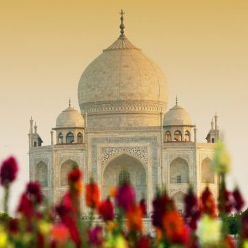 Wallpaper Taj Mahal, Agra, India, HD, 4K, World - Android / iPhone HD Wallpaper Background Download